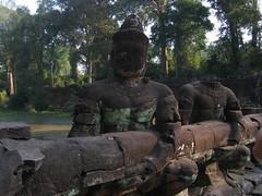 Naga Tug of War