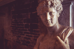 Sadness (Capture the planet) Tags: nikon d810 nikkor fx flickr venice venitia italy italian italia adriatic lagoon tourist tourism romance romantic history statue carving sculptor doge palace ruler government fireplace marble fineart talent fav10