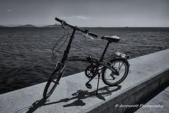 Folding Bike (Oktay A) Tags: blackandwhite bike bicycle nokia 1020 folding foldingbike sahil lumia siyahbeyaz caddebostan katlanr pureview