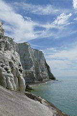 Chaotic (Elsie esq.) Tags: englishchannel sea sussex undercliff