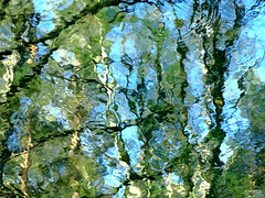 Is that all there is? (vertblu) Tags: blue light distortion abstract reflection green water reflections spring stream bright distorted turquoise teal vert bleu brook abstraction ripples waterabstract lightgreen springtime abstrakt lightblue brightcolours mirroring abstractnature trkis transcending reflectedlight lightreflections abstracttree reflectedtrees natureabstracted abstractreflections reflectedfoliage reflectedskies vertblu reflectedtwigs reflectedbirchtrees
