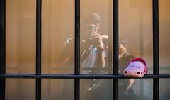 Nobody likes it (lorenzoviolone) Tags: finepix fujix100s fujifilm fujifilmx100s vsco vscofilm window x100s crocs fence gopro mirrorless myself pointofview pov reflected reflections selfie shoe streetphoto streetphotocolor streetphotography walk:rome=aug032016 roma lazio italy