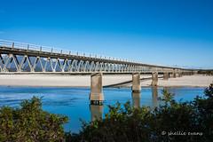Haast River Bridge (flyingkiwigirl) Tags: bridge river single lane longest haast