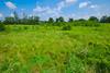 Meadow (wackybadger) Tags: grass wisconsinstatenaturalarea nikon sky nikond60 wisconsin sigma1020mmf4exdchsm trempealeaurivermeadowsna sna346 buffalocounty bluesky meadow clouds