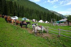 DSCF1978 (jinux.yang) Tags: kyrgyzstan d11