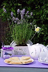 Lavender shortbread (Blue sky and countryside.) Tags: lavender infused shortbread home baking cookery recipe tasty garden sunshine derbyshire england pentax