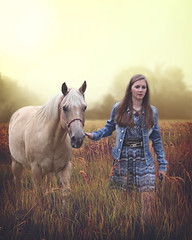 Sara (Ruby Wayne) Tags: background vintage day tree russia grunge silhouette flower morning autumn fog herb lush landscape field grass light meadow nature beautiful ecology horse outdoor