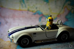 This Makes Me Look Good (Little Hand Images) Tags: minion toy actionfigure metaltoycar toycar map miniondriving roadster roadtrip blurredbackground shallowdof