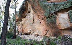 160925_Warrumbungles_5668.jpg (FranzVenhaus) Tags: trees creek countrybush plants cliffs australia mountains warrumbungles nsw water newsouthwales wilderness rocks aus