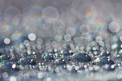 Diamonds Are a Girl's Best Friend (J. Sibiga Photography) Tags: shimmer glisten rainbow bokeh dof depthoffield