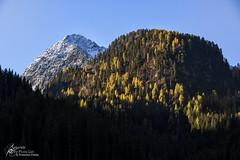 Greeting. (Separate Sky) Tags: dolomiti dolomites lagorai trentinoaltoadige trentino mountains montagna montagne mountain range view landscape nature