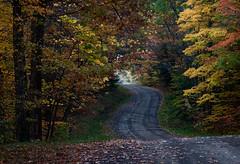 Fall road trip (Thankful!) Tags: road roadtrip fall autumn backroad ruralnewyorkstate upstatenewyork