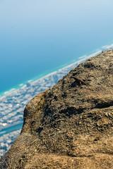 DSC_6083 (sergeysemendyaev) Tags: 2016 rio riodejaneiro brazil pedradagavea    hiking adventure best    travel nature   landscape scenery rock mountain    high green   summit  lizard