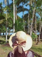 chapéu (dearspringtime) Tags: chapeu hat laço vintage beautiful place amazon amazonas brazil brasil tree trees daisy travel nature adventure