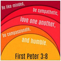 First Peter 3:8 (joshtinpowers) Tags: peter bible scripture