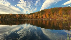 It is Autumn! (Joseph W Ling) Tags: lake welch harrimanstatepark ny autumn fall water landscape scenery reflection reflect cloud blue mirror tranquility quiet peaceful color colorful
