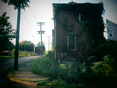Down On the Corner, Up In the Weeds. (david grim) Tags: manchester pa pennsylvania pittsburgh northside
