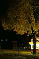 (theleakybrain) Tags: pumpkinnights pumpkin nights mnstatefair p1460139 halloween halloweenwalk minnesota jackolantern jack lantern