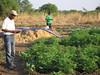 Mosambik: Genug Wasser für fruchtbare Landwirtschaft (Caritas international) Tags: wasser dã¼rre katastrophenvorsorge lã¤ndlicherraum landwirtschaft tabara chimoio mosambik moz