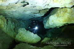 IMG_6912 (2) (SantaFeSandy) Tags: ballroom diving divers derek covington rebreather can cavern cave canon camera catfish sandrakosterphotography sandrakosterphotographycom sandykoster sandy sandra santafesandysandrakosterphotographycom sandrakoster swimmers scuba springs colors caves