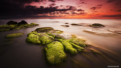 Mossy rocks (Nelson Michael) Tags: sunset seascape nature rock zeiss landscape evening landscapes moss rocks ray seascapes sony malaysia nd za sabah singh kudat cokin 1635mm a99 sonyalpha rgnd torongkungan