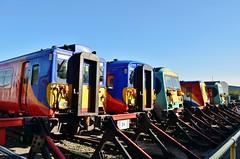 Lined up at Wimbledon.... (stavioni) Tags: west electric train south rail railway trains depot multiple emu wimbledon juniper unit swt class458 class455 class456 456016 455851 456020 458012 455736