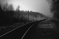 (Alexander Oleynik) Tags: autumn bw railway forestbelt