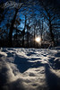 Winter photo Robin Looy (bandphotographer) Tags: winter snow holland nature netherlands robin forest woods sneeuw nederland national bos geographic looy