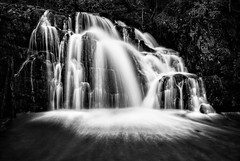Lilydale Upper Falls (Colin Butterworth) Tags: white black monochrome waterfall nikon australia falls upper tasmania lilydale d80