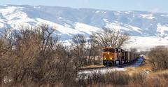 Railroad -- Bighorn Mountains, Wyoming (sbuckleywyo) Tags: railroad mountains train big wyoming horn bighornmountains bighorns