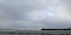 The Oga Peninsula (Jussi Salmiakkinen (JUNJI SUDA)) Tags: winter sea sky japan clouds landscape lights coast seaside shore     akita   japani  oga japansea   ogapeninsula     northanjapan
