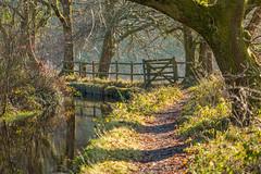 The Canal Gate (trevorhicks) Tags: winter canon canal gate path walk devon tamron tavistock 700d