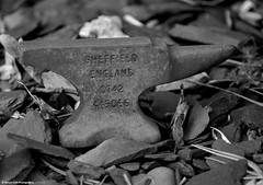 tiny anvil sheffield (Simon Dell Photography) Tags: face grave statue angel yard quiet objects be hanging items shhhh