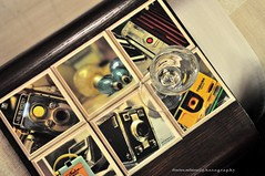 photography enjoy life (dimitra_milaiou) Tags: life camera new wood old house art love home glass colors smile museum vintage greek photography design nikon europe moments time photos live memories decoration collection greece enjoy use years past coasters dimitra 2015 d90    sousverres  milaiou