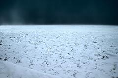 Ice and Squall (mpardo.photo) Tags: winter sky snow ice squall outdoors niagara lakeontario ccby jordanharbour