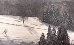 Ausflug ins Winterwunderland.