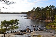 Southeastern shore of Cape Nuottaniemi (Uutela recreation area, Helsinki, 20111126) (RainoL) Tags: november autumn sea rock forest finland geotagged helsinki balticsea u helsingfors fin vuosaari uusimaa uutela nyland 2011 201111 20111126 geo:lat=6019778900 geo:lon=2516394400