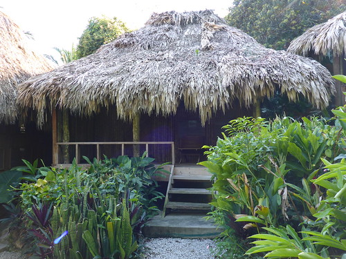 "Lamanai Outpost Lodge, 7 ""Coatimundi"""