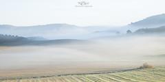 Neblinas de la maana (JaF_Photography) Tags: verde paisaje amanecer montaa niebla frio canonef24105 amanace