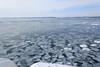 Sea of drift ice / 流氷の海 (yanoks48) Tags: sea japan hokkaido 北海道 日本 海 abashiri 流氷 網走 driftice オホーツク海 seaofokhotsk
