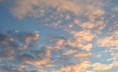Sky - 28x50x50 (KangaRo) Tags: sky clouds nikon outdoors 50mm 50x50x50 50x50x50challenge