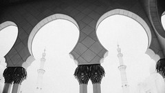 Light & Shade (Bartholomew K Poonsiri) Tags: blackandwhite monochrome contrast column arc cloister architecture mosque minaret muslim islam uae abudhabi wideangle sonyilce6000 sonyepz1650mmf3556oss filmemulation