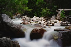 On the rocks (Alvin Harp) Tags: longexposure trees nature forest river utah july rapids le waterfalls littlecottonwoodcanyon bolders 2016 mountainstream naturesbeauty smoothwater silkywater teamsony sonya7rii sonyilce7rm2 alvinharp fe41635zaoss