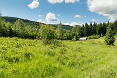 DSC_2463 (czargor) Tags: mountains landscape hill mountainside beskidy inthemountain dogtrekking beskidzywiecki