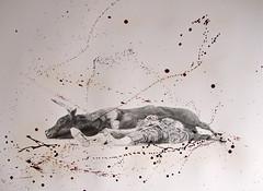 No One Wins. (www.kevinmaxwellsfineart.com) Tags: bulls bullfighting josetomas graphite chinagraph blood anegitive blackandwhite toros torosymatadores matadores drawing spanish espana