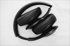 DSCF0349 (liseykina) Tags: jbl everest headphones