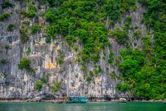 Ha Long Bay (ReinierVanOorsouw) Tags: sonya7rii sonya7r sony reizen reiniervanoorsouw reiniernothere travel vietnam asia asya azie halong halongbay water lifeonwater