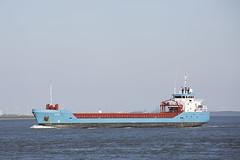 CITO (angelo vlassenrood) Tags: eos5diii ship vessel nederland netherlands photo shoot shot photoshot picture westerschelde boot schip canon angelo walsoorden cargo cito