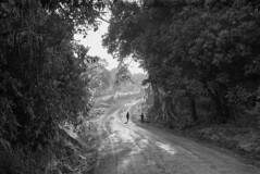 Going-Home,-Tanzania-2015