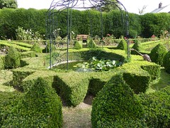 Clipped (Granpic) Tags: norfolk norwich garden bishopshousegarden lilypond fountain